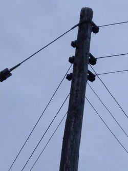 Pole Supplying Supplying Two Properties.jpg
